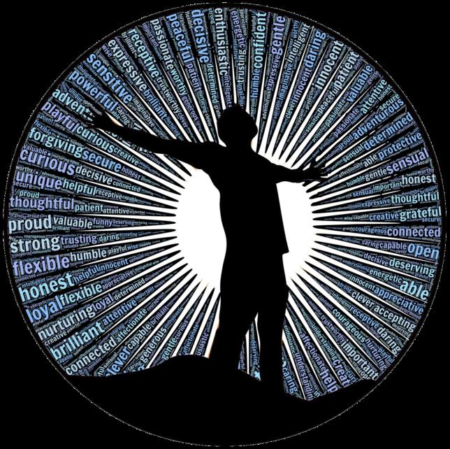 values blog Zilvold coaching & Training
