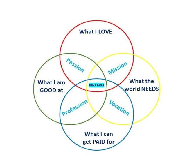 Zilvold Coaching & Training BLOG Ikigai