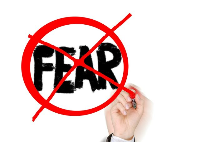 Zilvold Coaching & Training Blog tips to master fear