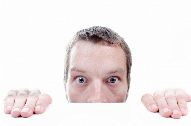 Blog Emoties gevoelens Zilvold Coaching & Training