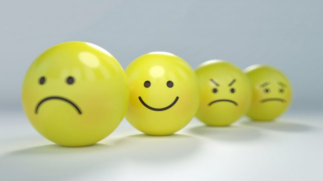 Emotions Blog by Zilvold Coaching & Training